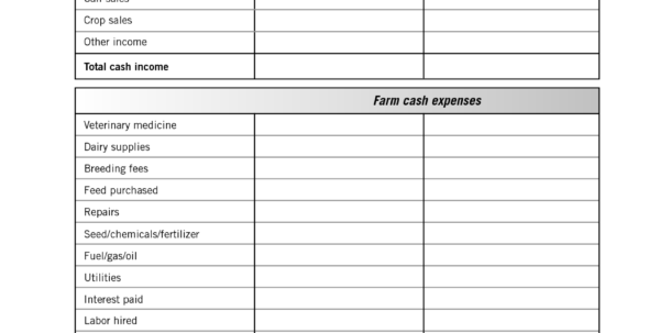 Free Income And Expense Worksheet