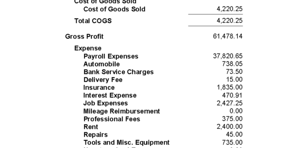 Profit Loss Statement Template Excel 1
