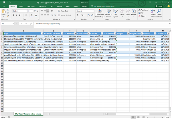 Excel Client Database