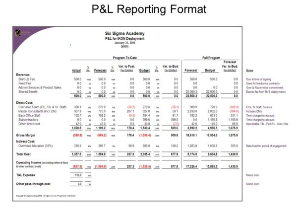 Profit And Loss Statement Template Excel 2007 1