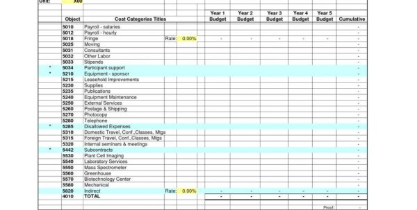 Business Budget Spreadsheet Free Download