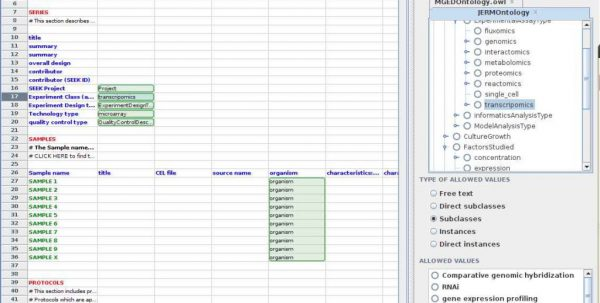 Excel Database Templates