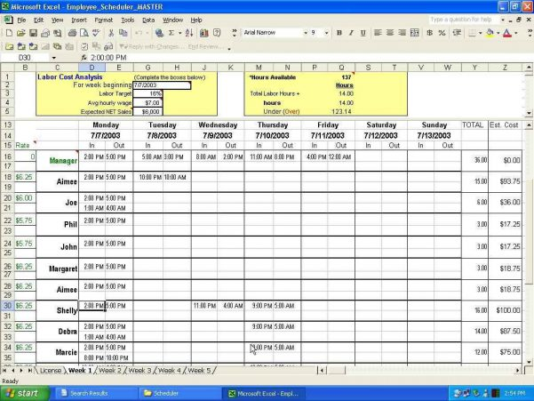 Microsoft Access Spreadsheet