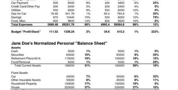 Profit And Loss Spreadsheet