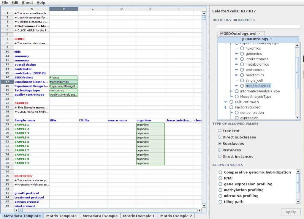 project management spreadsheet template google docs template for spreadsheet project management. Black Bedroom Furniture Sets. Home Design Ideas