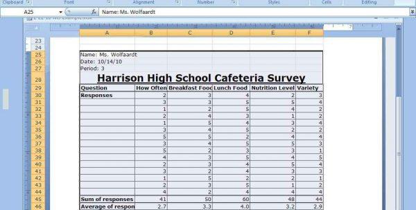 Survey Analysis Spreadsheet Template