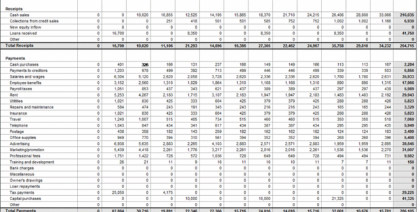 Monthly Cash Flow Projection Excel