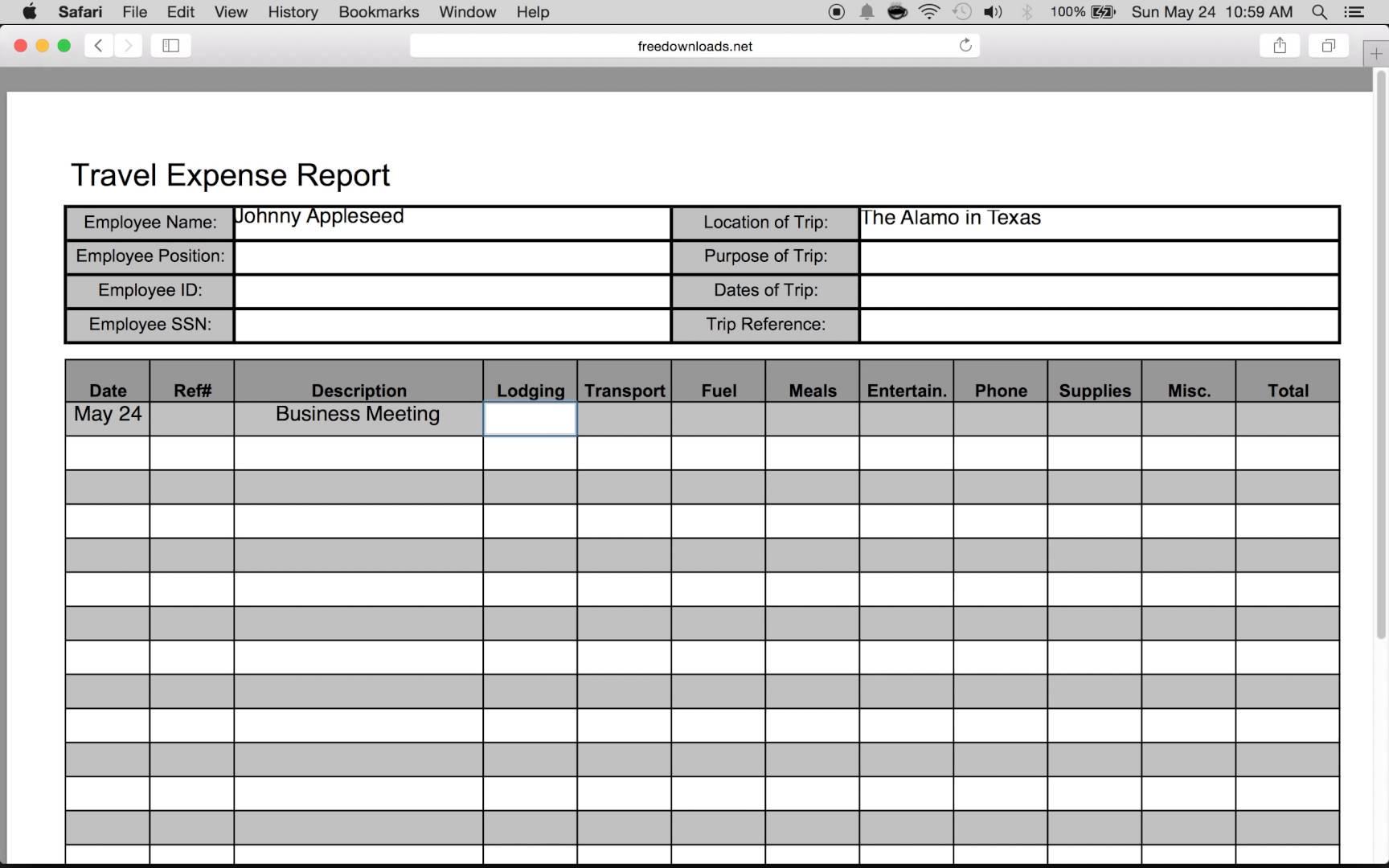 microsoft expense report