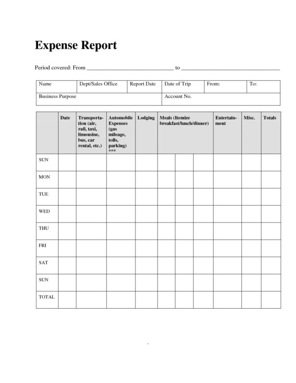 Monthly Expense Report Template 2