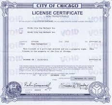 Llc Business License