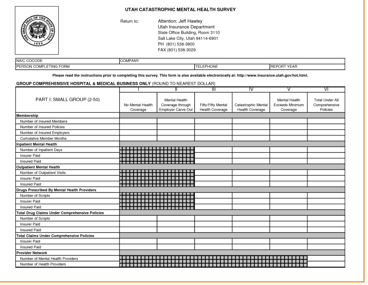 Survey Data Excel Template