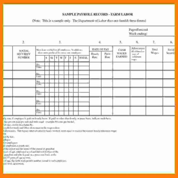 12  Payroll Spreadsheet Sample   Balance Spreadsheet And Payroll Spreadsheet Template Free