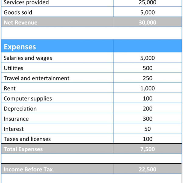 16  Income Statement Format Pdf | And Income Statement Template In Excel