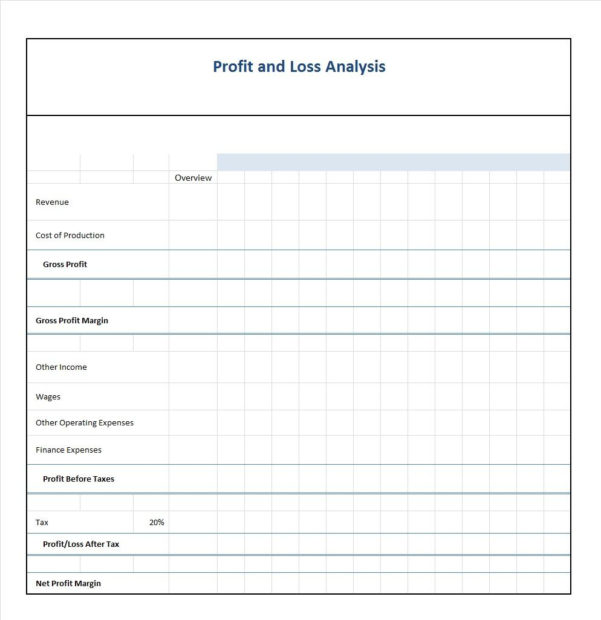 35  Profit And Loss Statement Templates & Forms With Excel Profit And Loss Template