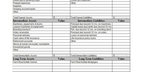 38 Free Balance Sheet Templates & Examples   Template Lab And Personal Financial Balance Sheet Template