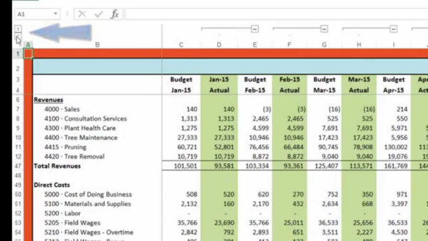Budget Vs Actual Spreadsheet Template On Spreadsheet Templates Within Sample Spreadsheet Budget
