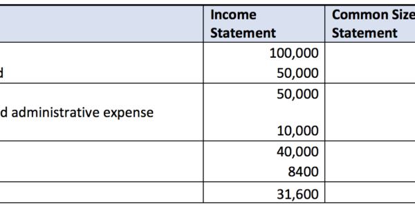 Common Size Income Statement And Quarterly Income Statement Template