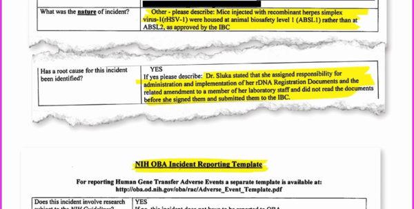 Construction Schedule Template Excel Kpi Report Template Excel Then With Kpi Reporting Templates Excel