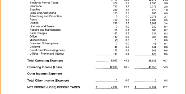 Elegant Income And Expense Statement Template   Template Within Income And Expense Statement Template