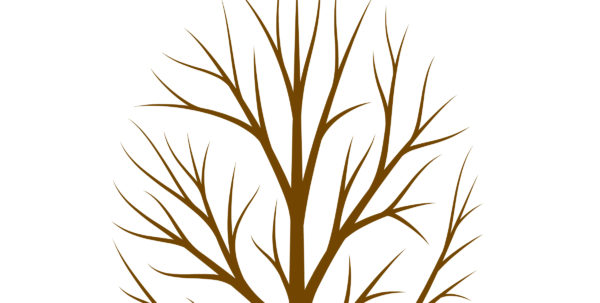 Fingerprint Tree Teacher Gift   The Country Chic Cottage For Teacher Printable Templates