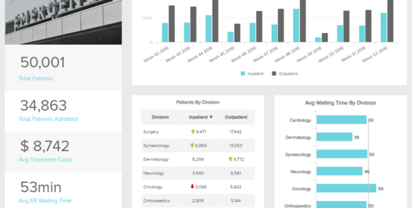 Healthcare Dashboards   Examples & Templates For Hospitals Etc. With Safety Kpi Excel Template