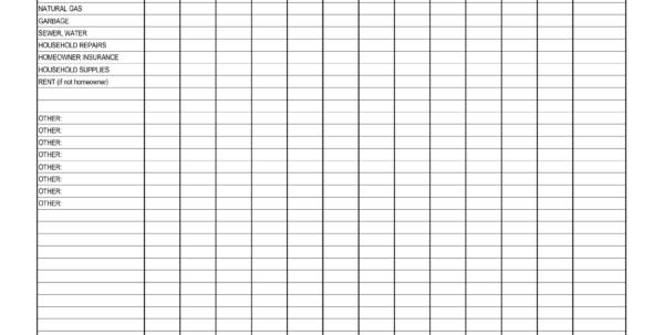 Household Expense Sheet   Kivan.yellowriverwebsites To Monthly Expense Spreadsheet Template
