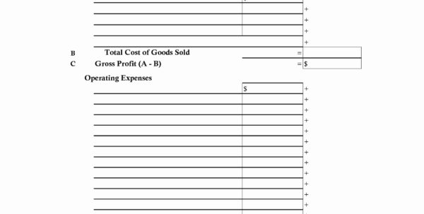 Income And Expense Statement Excel Best Of In E And Expense With Income And Expense Statement Template