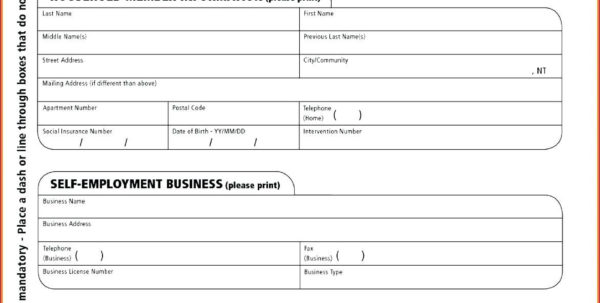 Monthly Income Statement Template Excel Lovely Year Date Profit And And Income Statement Template In Excel