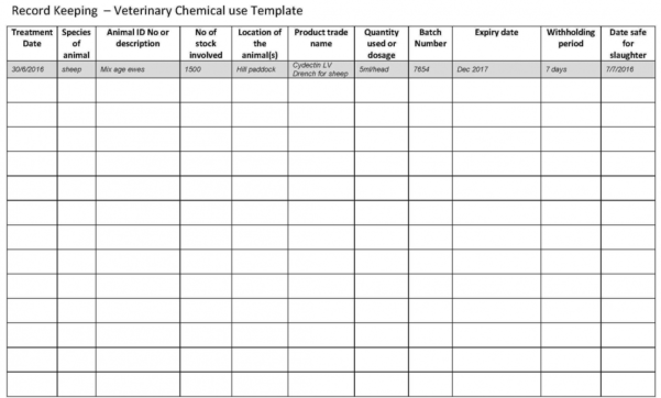 New Record Keeping Template For Small Business   Lancerules In Bookkeeping Records Template