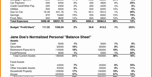 Personal Financial Statement Template Excel Monthly In E Statement Intended For Monthly Financial Statement Template Excel