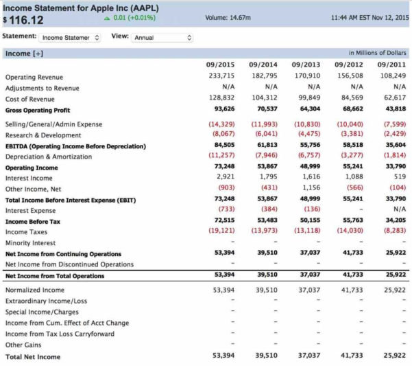 Premium Income Statement Creator   Lancerules Worksheet & Spreadsheet Intended For Simple Income Statement