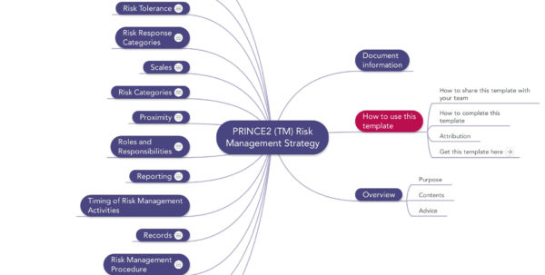 Prince2 Risk Management Strategy | Download Template For Project Management Plan Template Free