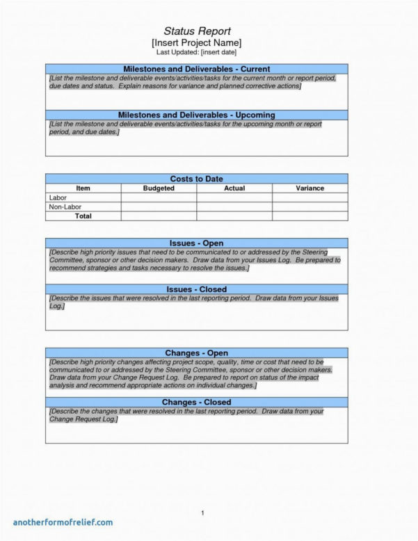 Project Management Status Report Template Free Templates Inside Project Management Templates Word