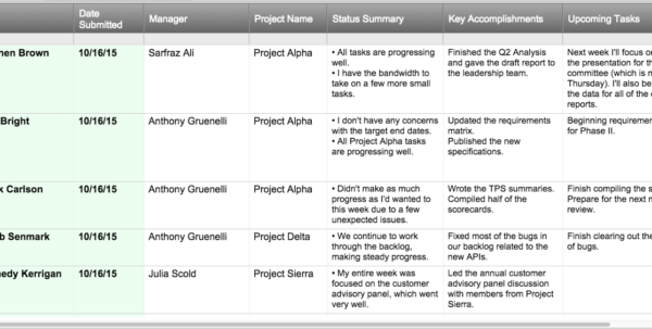 Project Status Report Checklist   Creating Your Weekly Report In Project Management Reporting Templates For Status