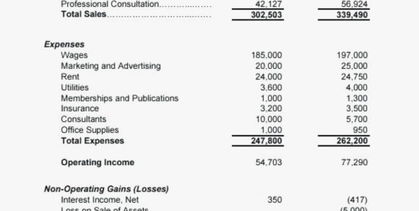 Sample Income Statement Format Easy Profit And Loss Form Statements To Income Statement Template Word