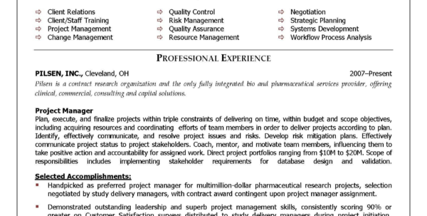 Sample It Project Manager Resume Sample Pdf Project Manager Resume Intended For Project Management Templates Pdf