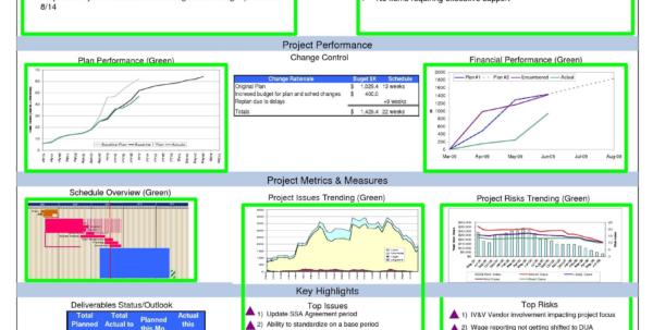 Sample Portfolio Dashboard New Project Management Dashboard Template And Project Management Dashboard Templates