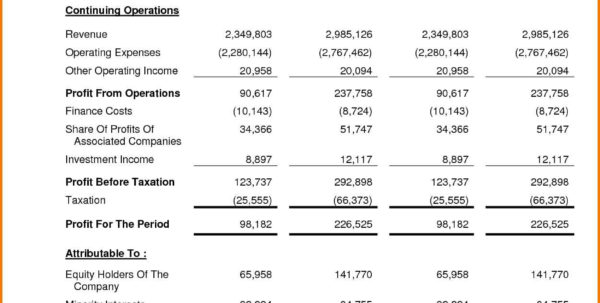 Simple Financial Statement Template | Sosfuer Spreadsheet Inside Simple Income Statement Template