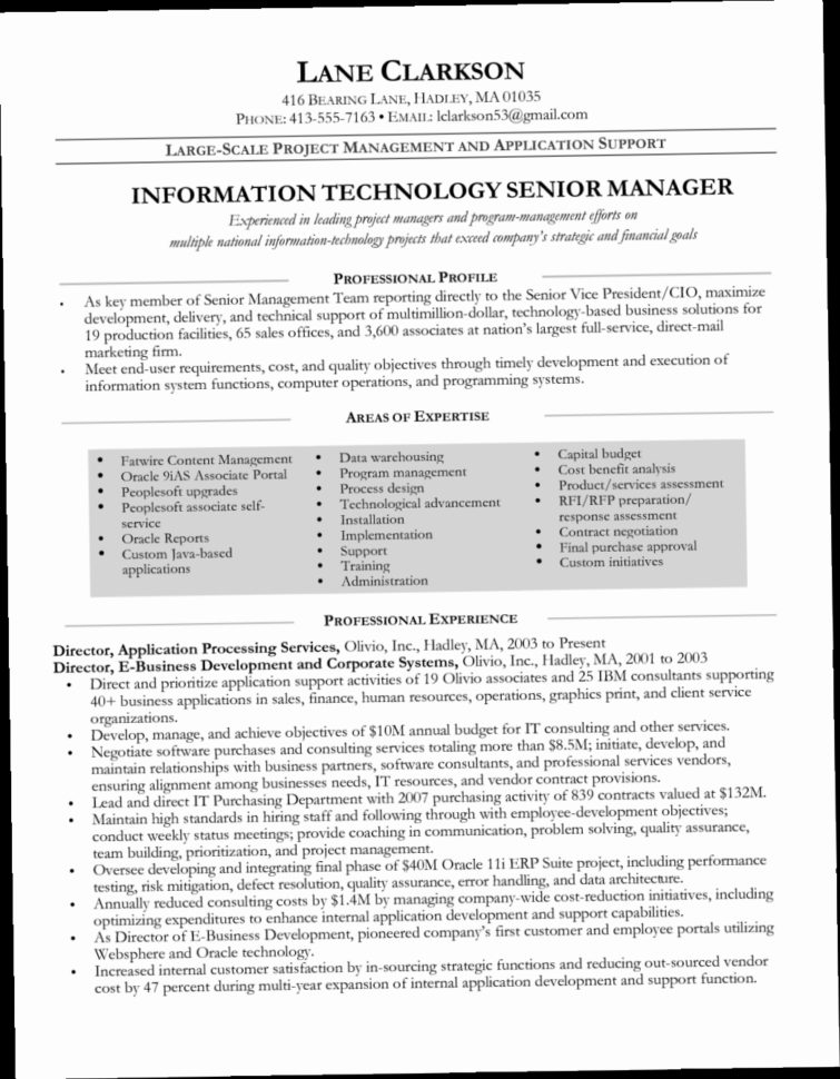 Technical Project Manager Resume Sample 1Rsf It Manager Resume With Project Management Resume Templates