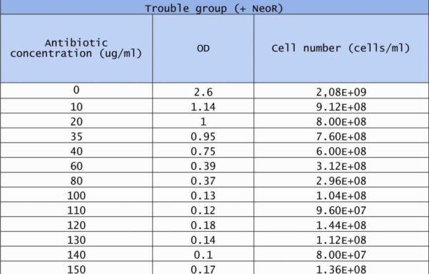 Tool Inventory Spreadsheet | Worksheet & Spreadsheet And Sample Inventory Spreadsheet