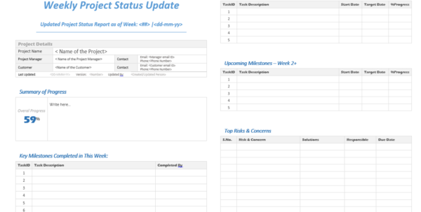 Weekly Project Status Update Template   Analysistabs   Innovating With Project Management Meeting Templates