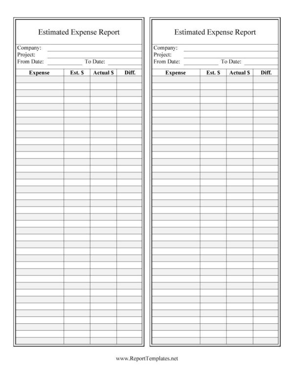 40  Expense Report Templates To Help You Save Money   Template Lab And Company Expense Report