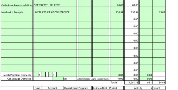 annual business expense report template