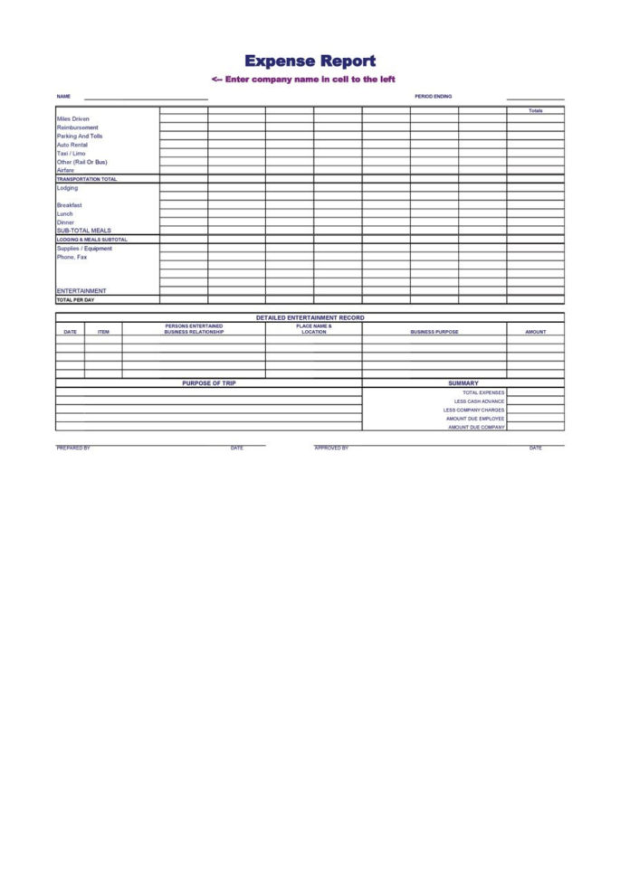 40  Expense Report Templates To Help You Save Money   Template Lab With Company Expense Report