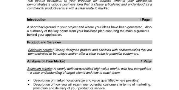 5 Page Business Plan Template Valid Printable Sample Business Throughout Form Business Plans