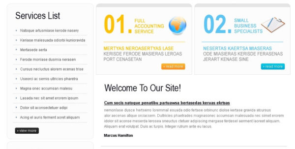 Accountant Website Templates Free Download   2018 Within Accounting Website Templates Free Download