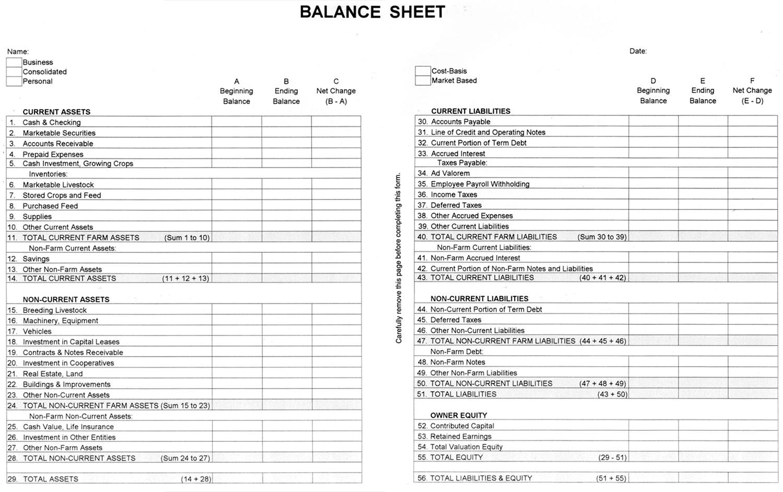 Agec 752 Developing A Balance Sheet » Osu Fact Sheets In Accounting Forms Balance Sheet