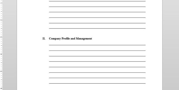 Business Plan Template In Form Business Plans