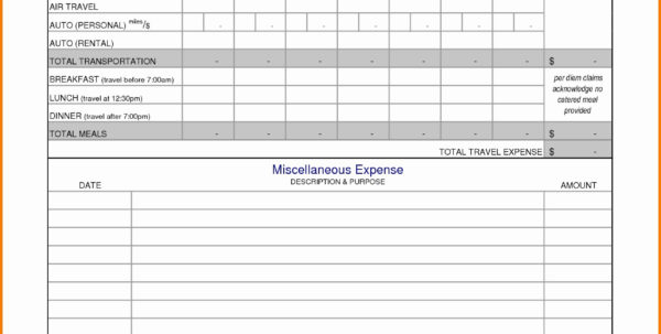 Business Travel Expense Report Template Expense Report Template With Business Travel Expense Template
