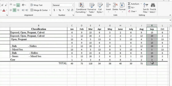 Cattle Inventory Spreadsheet As Excel Spreadsheet Time Tracking And Cattle Inventory Spreadsheet